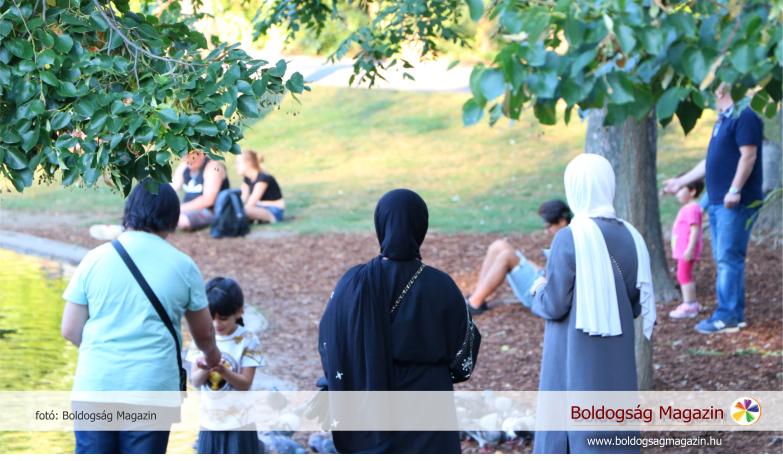 Több kultúra egymás mellett élése Bécsben